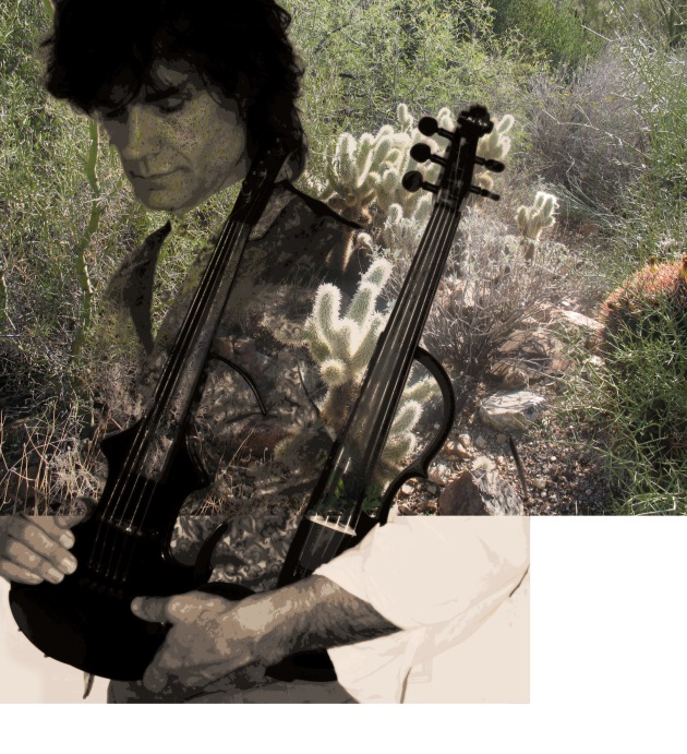 darkviolin-cholla-1920-630px